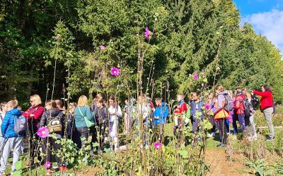 Obisk eko kmetije in zeliščnega vrta